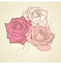 Three roses in vintage colors background vector image vector image