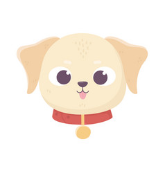 cute face dog collar medallion domestic cartoon vector image