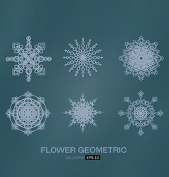 flower geometric vector image