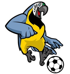 Macaw bird playing soccer vector