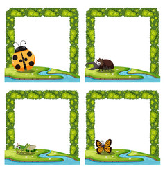 Set of insect nature border vector
