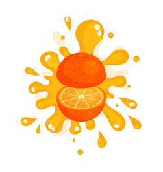 Sliced ripe orange juice splashing colorful fresh vector