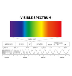 Visible light diagram color electromagnetic vector