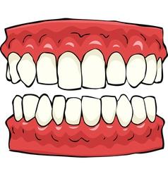 false teeth vector image vector image