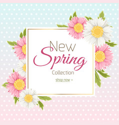 spring shopping sale banner template daisy flower vector image