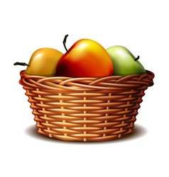 Red and green ripe apples in basket vector