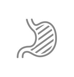 Sore human stomach line icon abdominal distension vector