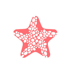 starfish isolated sea animals on white background vector image vector image