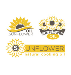 Sunflower natural cooking oil product vector