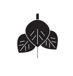 anthurium black concept icon anthurium vector image