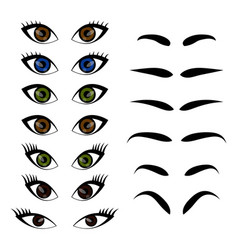 Female woman eyes and brows collection set vector