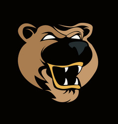 head bear vector image