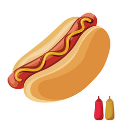 Hot dog with ketchup and mustard on top isolated vector