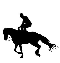 riding stunt horse vector image