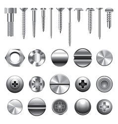 Set screws nails vector