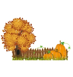 Autumn Tree and pumpkins vector image