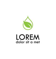 green leaf drop eco logo vector image