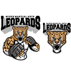 MMA fighter leopard vector image vector image