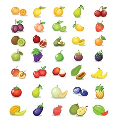 Mixed fruit vector image