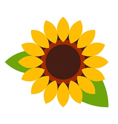 Sunflower - flower icon vector image vector image