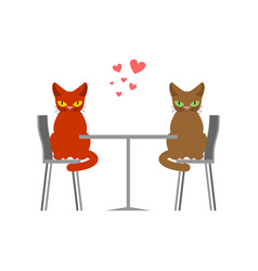 cat lovers in cafe lover in restaurant pet vector image