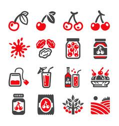 cherry icon set vector image