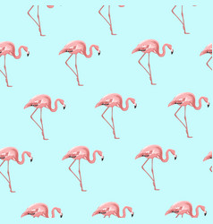 Exotic pink flamingo bird on blue seamless pattern vector