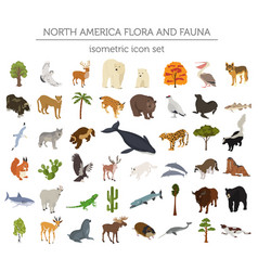 Isometric 3d north america flora and fauna vector
