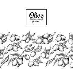 Olive oil label hand drawn of vector