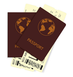 passports with plane tickets vector image
