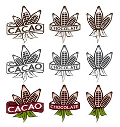 Cacao beans with leaves labels set vector