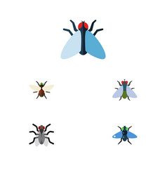 Flat icon fly set of gnat housefly dung and vector