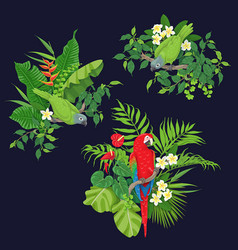 Green parrots and red macaw on tree branch vector