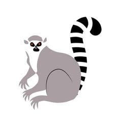 Lemur an animal flat style vector