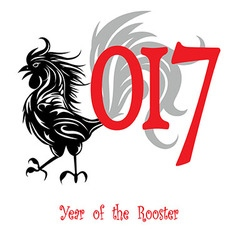 rooster bird concept chinese new year vector image