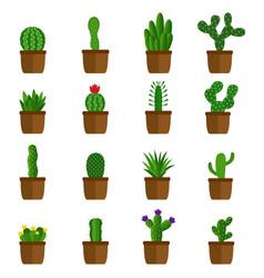 set cactus in pots vector image