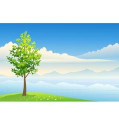 Summer tree background vector