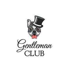 bulldog wearing in top hat gentleman dog vector image