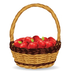 Basket of Red Apples2 vector image vector image