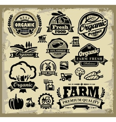 Organic harvest labels vector