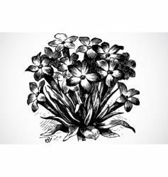 floral bouquet vector image