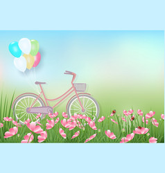 Cosmos flowers field and bicycle spring season vector