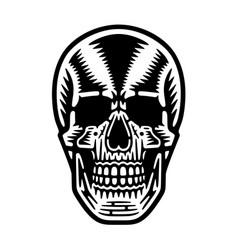 retro cool skull vector image