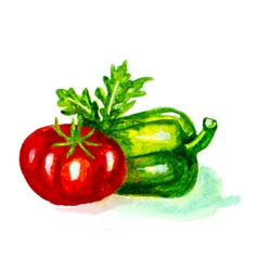 tomato and pepper vector image