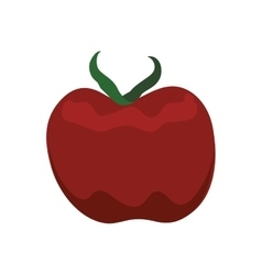 Tomato healthy food organic food market icon vector