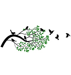 tree and bird silhouettes vector image