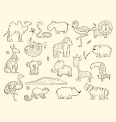 African wildlife animals jungle safari characters vector