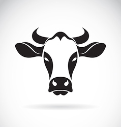 Cow face vector