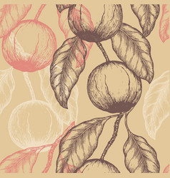 hand drawn brazil nuts seamless pattern branch vector image