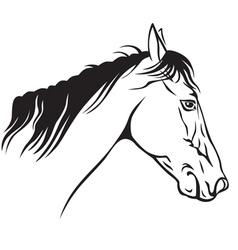 Horse profile vector